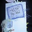 """Little Boy Blue"" accordion album"