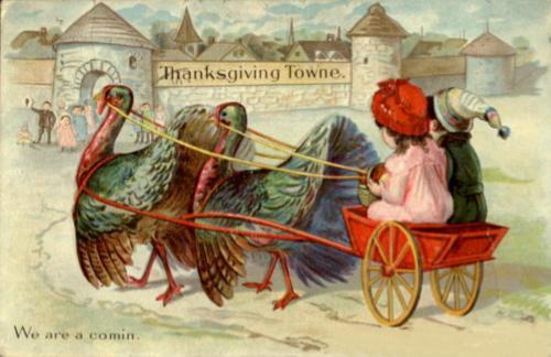 Turkey Cart